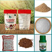 Organic Essentials